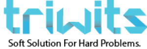 Triwits Logo